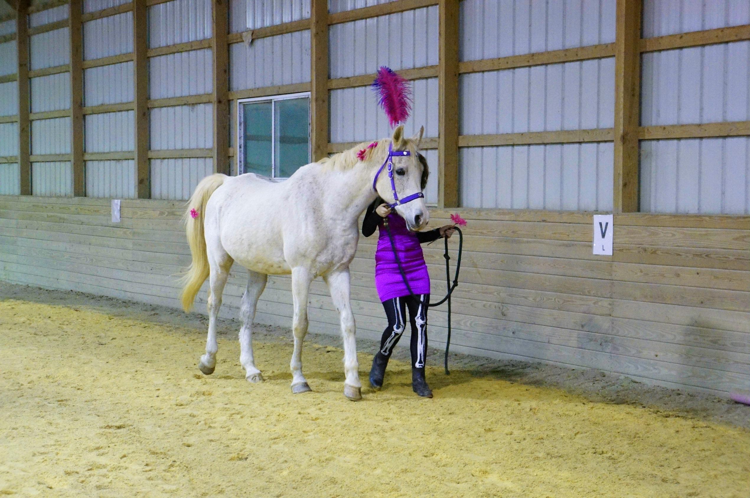 Halloween Slide Show! | Talbot Run Equestrian Center